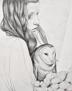 Owl Drawing by MichaelShapcott