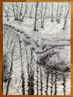 Study of 'Birches in Reflection' by SheepiAnna