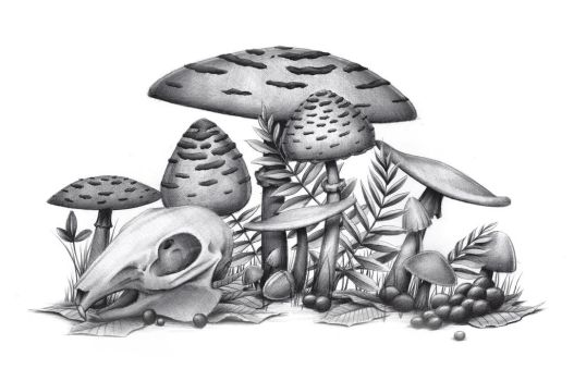 ballpoint pen mushrooms commission by 05Na