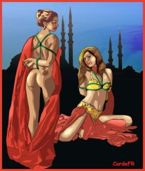 Odalisques by cordefr