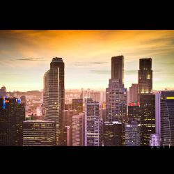 The Sunset and the Citylights by Renez