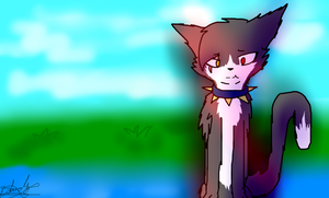 my oc Warrior Cats by blandy-wolf098YT