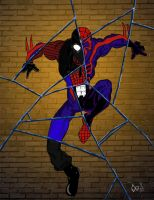 Spiderman Shattered Dimensions by millen4211