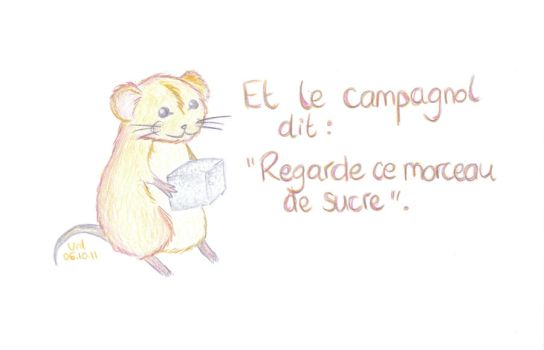 And the vole says by BazarDeLaNature