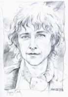 Peregrin Took by napalmnacey