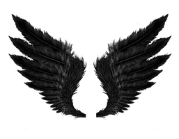 Black Wings PNG Stock by Gilgamesh-Art