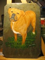 Custom Dog Portrait on Slate by PaintSlinger