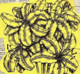 Post-it Lilies II by AbstractDoctrine