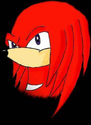 Knuckles by iceiwynd