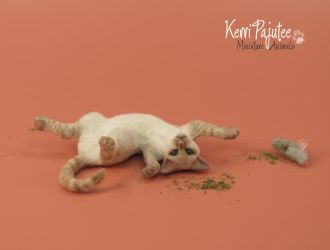 1:12 miniature cat sculpture - Tumble by Pajutee