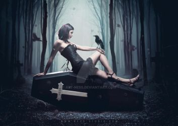 Goth - Coffin by Art-Ness