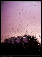 After rain comes.. by DannyRoozen