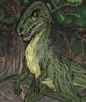 Coloured Raptor by Emily-Peacock