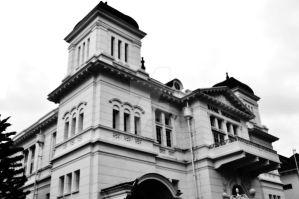 Bank Indonesia in BW by raffdaime