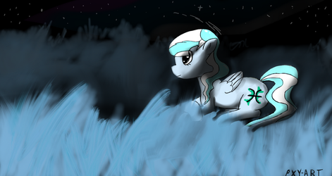 The calm at night by PXY-ART