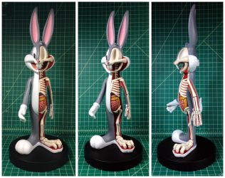 Bugs Bunny Dissection by freeny