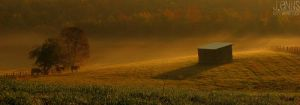 Early Morning Mist by johonbravo