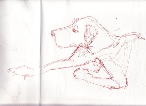 dog 1 by molly4114
