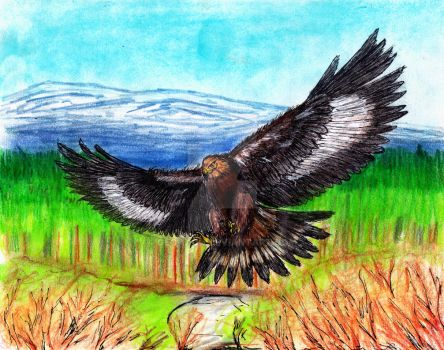 Aguila Real by GeoAxon