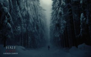 Winter Forest by lozdee