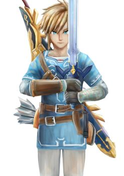 Breath of the Wild - Link The Hero of Hyrule by Advent-Hawk