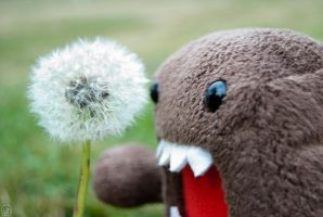 Domo and the Dandelion by Sh4d0wph4x