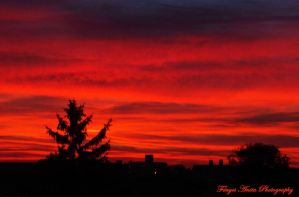 Bloody Sky by AnitaBright