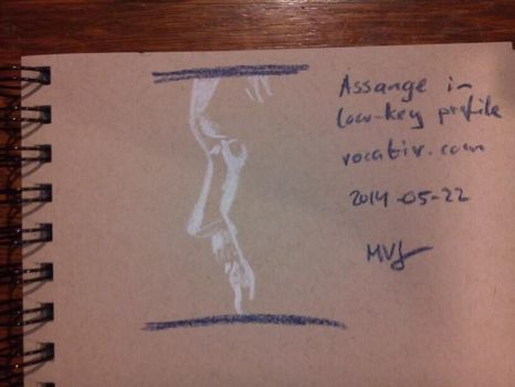 Assange by michiexile