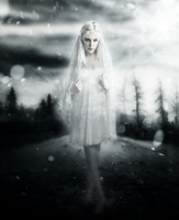 Winters Eternal Bride by Inadesign