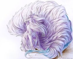 Shiny Ninetales by Ikebanna