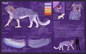 Pash Reference Sheet v.1.0 by aboveClouds