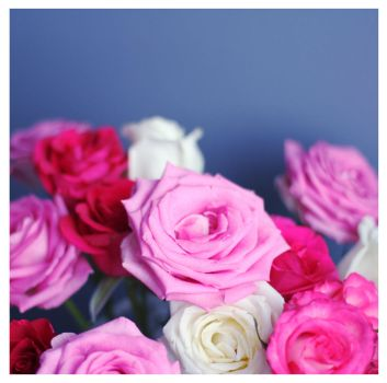 Romantic roses II by glassmanet