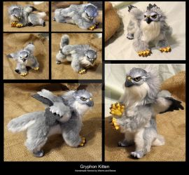 Gryphon Kitten by WormsandBones