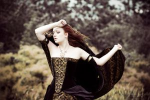 Velvet and brocade corset dress - 2012 collection by Esaikha