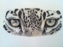 African Eyes by Hunkinart