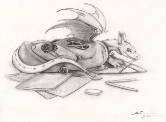 something in my bag by SilanaVerley