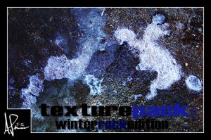 Texture Pack: Winter Edition by DemosthenesVoice