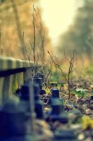 rail by Schuemmel