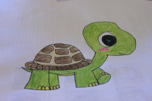 Turtle by Allie-CatisaLlama