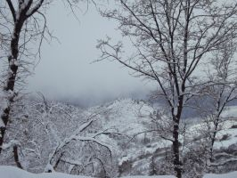 Snow In The Mountains-1 by Bearie23