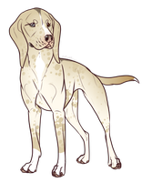 Coonhound Mix Adopt- Closed by CanisPitbull
