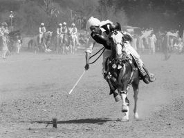 Tent Pegging - 12 by InayatShah