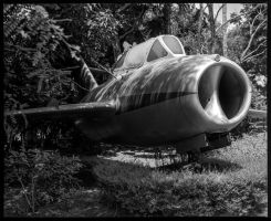 Mig in the Weeds #2 by Roger-Wilco-66