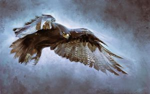 eagle - digital drawing by speedy-painter
