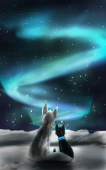 Northern Lights by TheWisestDino
