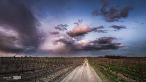 This year's first rain clouds by NorbertKocsis