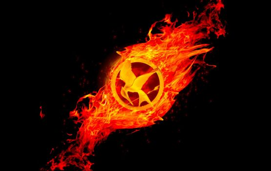 Hunger games catching fire (updated) by nitinchamp