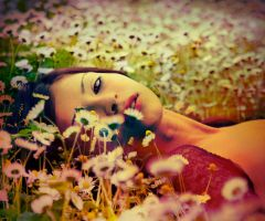cc 13 by metindemiralay