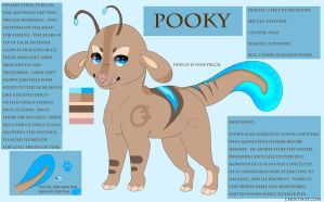 ++ Pooky Reference ++ by Chocukat