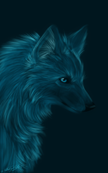 .: Right in the Night :. by WhiteSpiritWolf